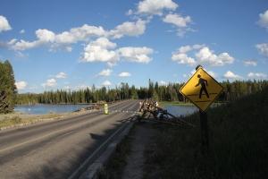 Yellowstone Nemzeti Park (Mészáros Márton felvétele)