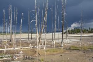 Yellowstone Nemzeti Park egy másik oldalról megközelítve (Mészáros Márton felvétele)