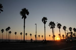 Útban vissza Los Angeles felé (Mészáros Márton felvétele)