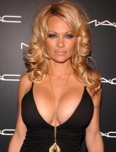 Pamela Anderson...amerikai....besorolása ismeretlen
