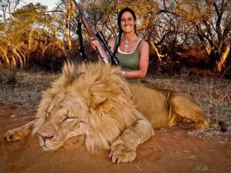 Melissa Bachman műsorvezető a lelőtt hímoroszlánnal pózol Dél-Afrikában, 2013. november