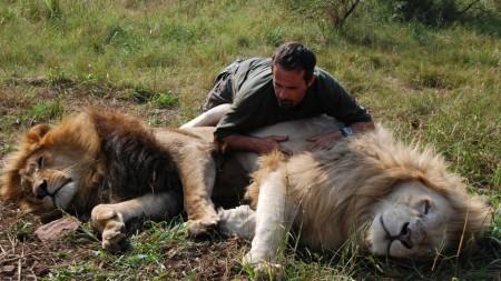 Kevin Richardson oroszlánjaival